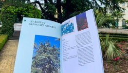 arbres_remarquables_brochure_main.jpg