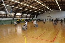 handi-basket-2010-03.jpg