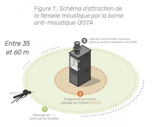 borne_qista_moustique.jpg