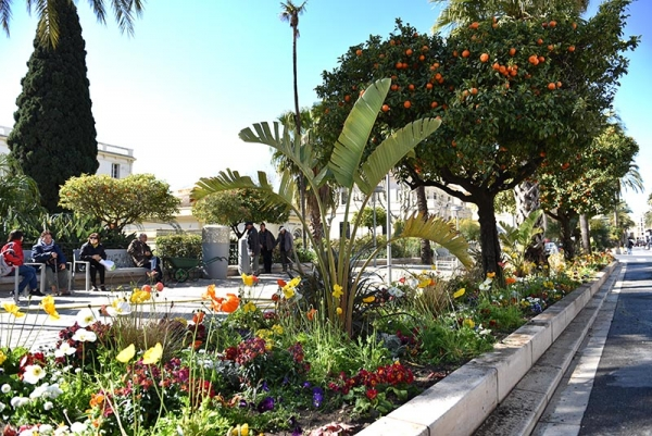 jardinieres_avenue_joseph_clotis_2019_074.jpg