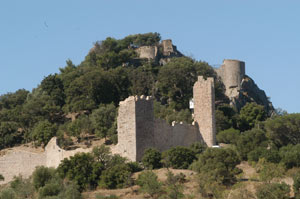 remparts-chateau-petit.jpg